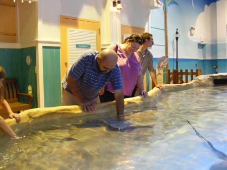Touching the stingrays at the Camden Aquarium